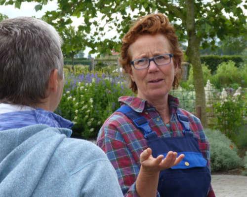 In juli en augustus kunt u een rondleiding volgen op Kwekerij Zonnemaire.