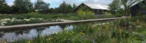 Kwekerij Zonnemaire, een ekologische oase in Zeeland