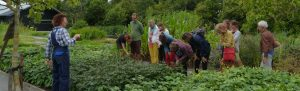 Bezoekers op de kwekerij van Dieneke Klompe