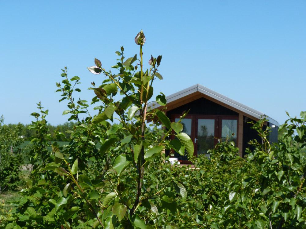 Huisje voor retraite in Zonnemaire Zeeland