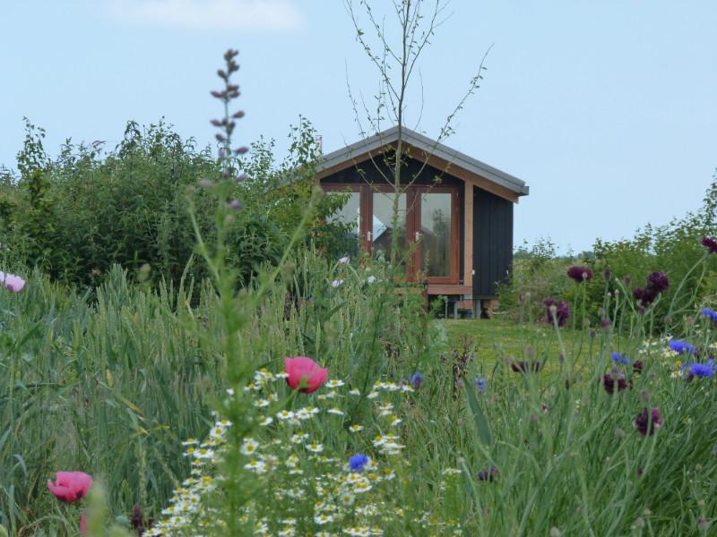 Retraite huisje in het groene weiland