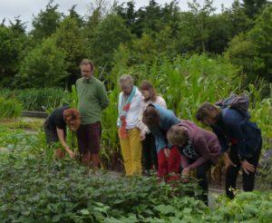 Bezoekers Kwekerij Zonnemaire bekijken planten